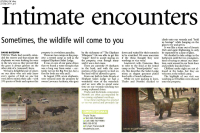 thula-citizen-23-september-2011