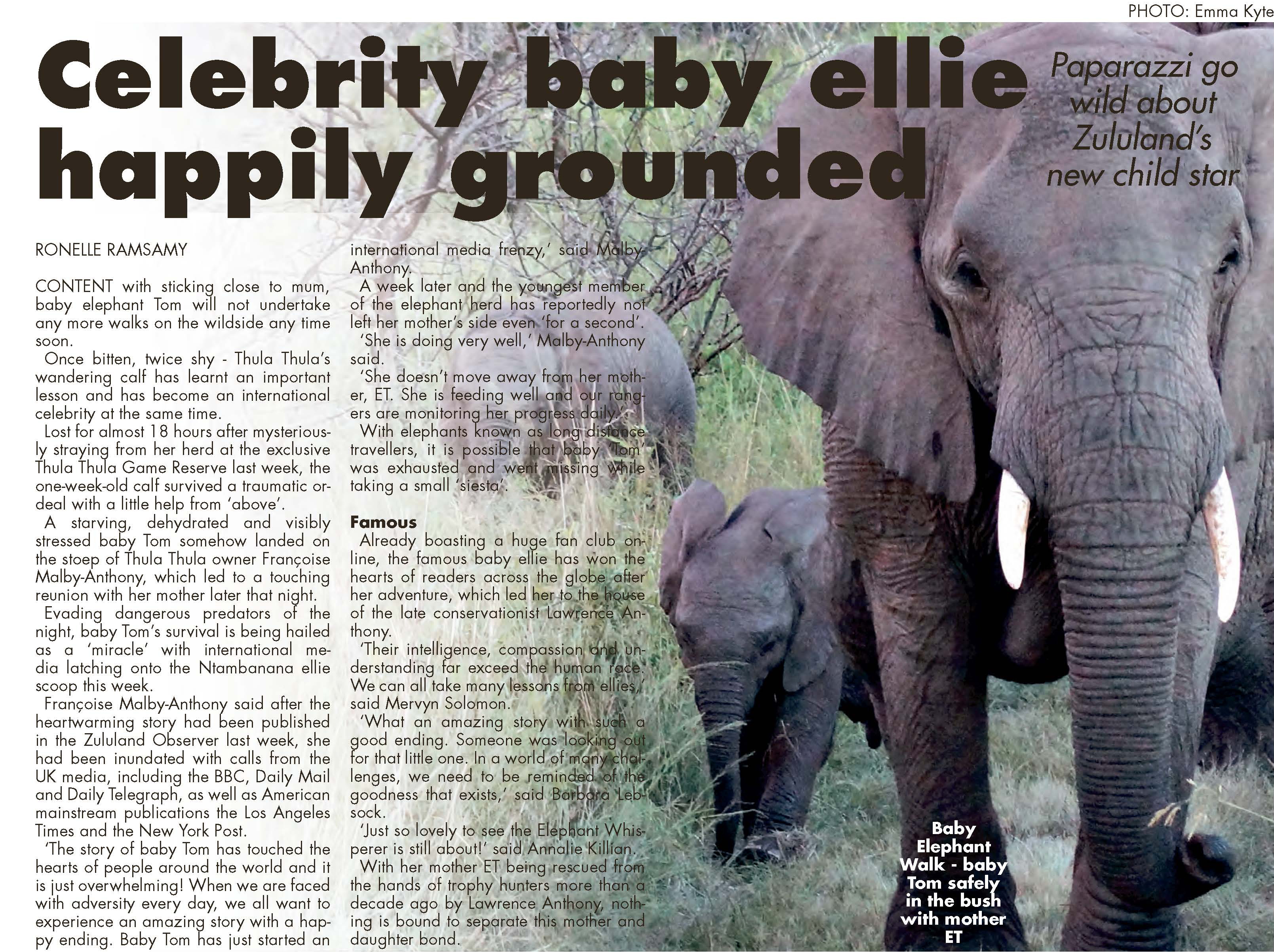 Celebrity baby ellie happily grounded